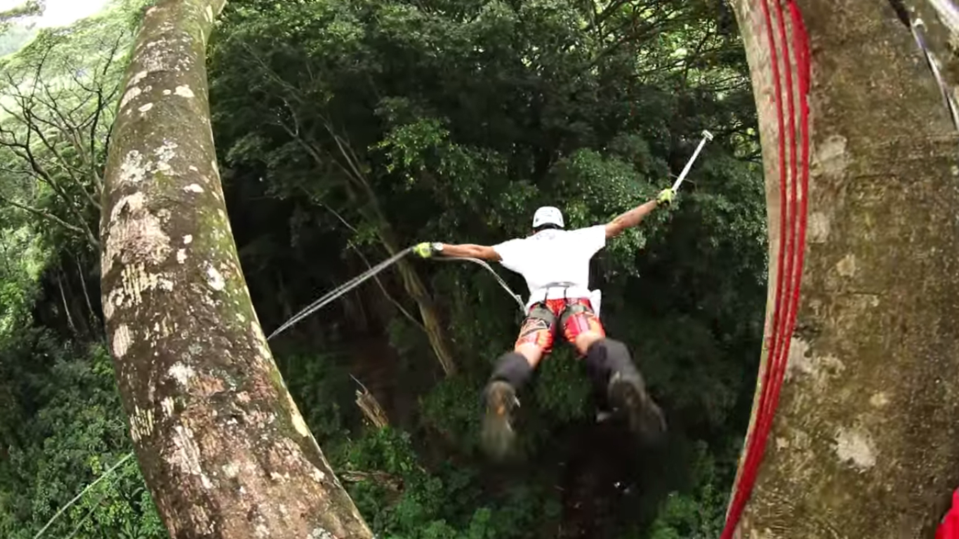 La sensation forte du saut à l'élastique