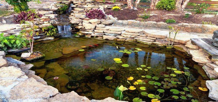 Comment réussir la décoration de son bassin ?