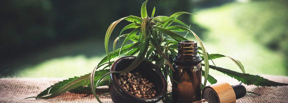 Les bienfaits du cannabis médical