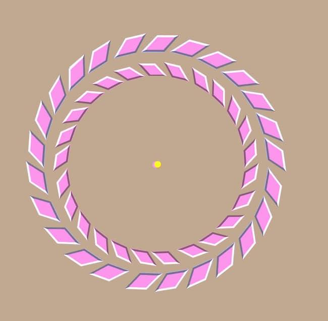Fixez le point jaune, déplacez votre tête : les anneaux roses commencent à tourner !