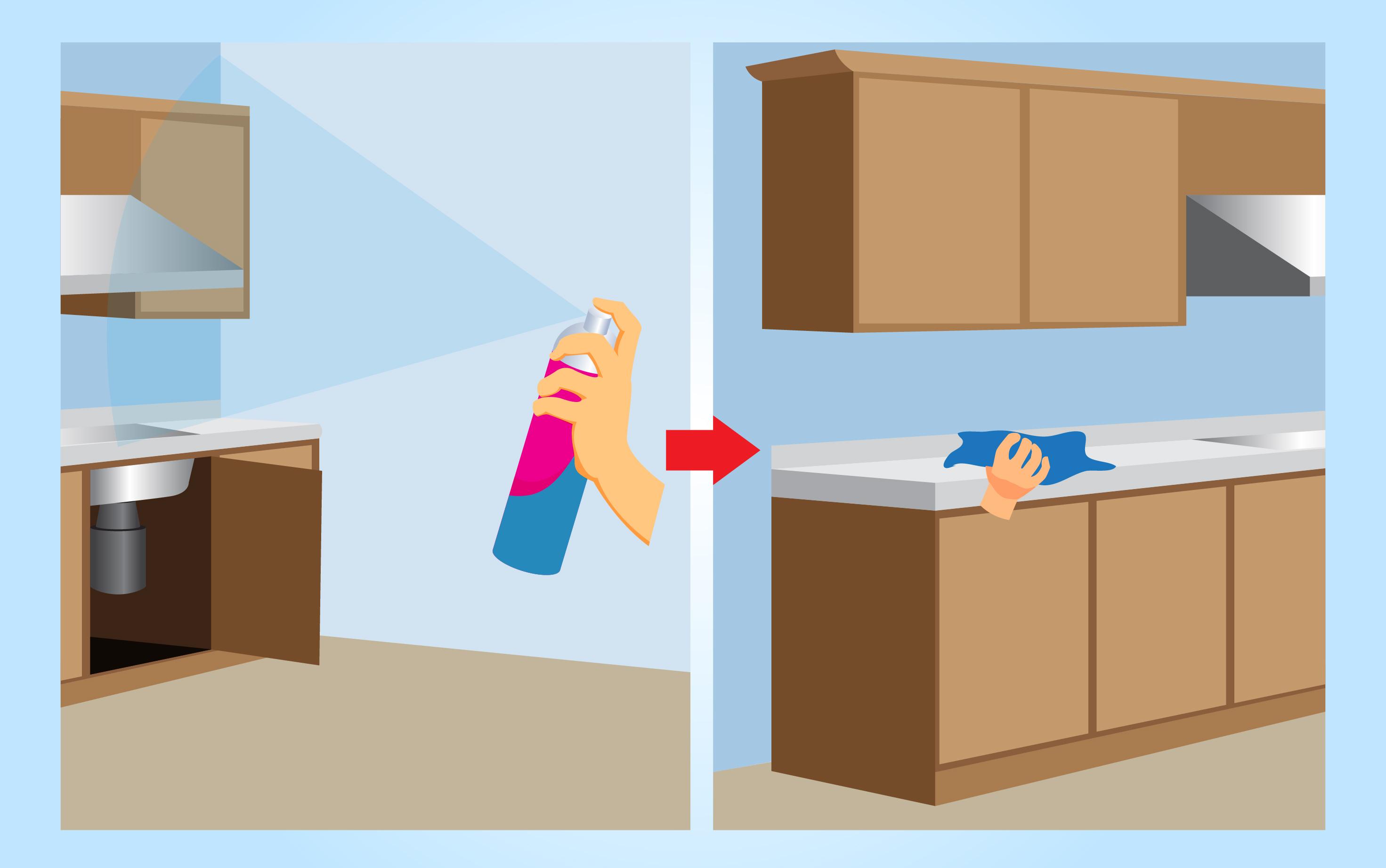 Comment se débarrasser des moucherons dans la maison ?
