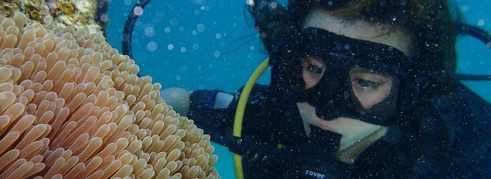 Espagne : des trafiquants faisant de la plongée sous-marine pour acheminer de la drogue